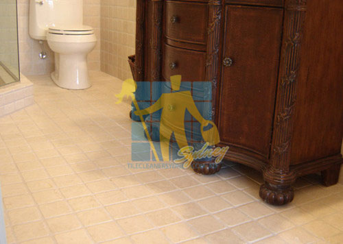 Natural Stone Tile Cleaning Sydney Nsw