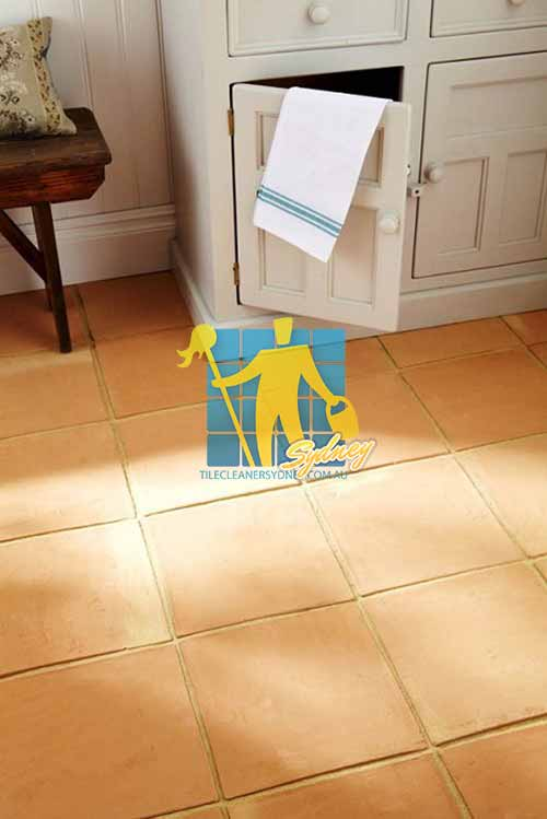 Cleaning Terracotta Tiles In Sydney Sydney Tile Cleaners